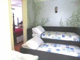 Room 4 Single Trundle bed, open, with ivy growing up wall